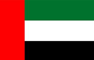 Доставка автозапчастей из ОАЭ в Россию